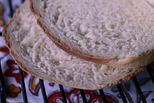 American Sandwich Bread-3