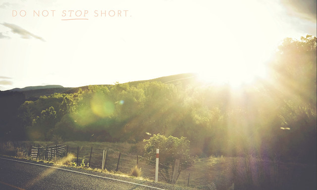 New Zealand Day | Stop Short