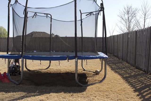 backyard9