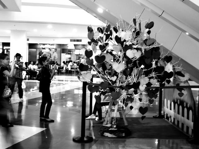 Heart Tree (February 2012)