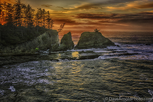 park travel sunset wild woman usa cloud mountain hot seaweed west tree sexy ass beach beautiful rock sex oregon forest canon sketchy naked nude photography spread bay coast us photo high fantastic photographer tour state pacific northwest or awesome tide low butt arnold pussy central picture logging peaceful wave pic tourist charleston where photograph empire wife upskirt cape 5d serene how milf ore idyllic tidal seastack northbend coos mkiii arago shoreacres davearnold davearnoldphotocom