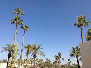 In-Between Sundome and Social Hall Sun City West, AZ