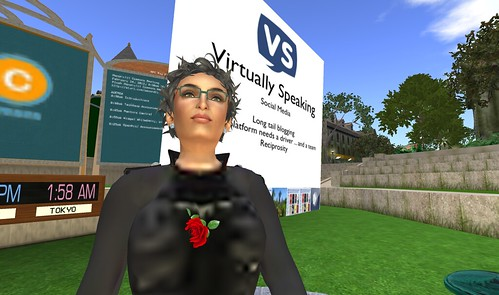 "widget whiteberry of ""virtually speaking"" at NPC"
