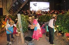 Fiesta de la Cosecha 2012