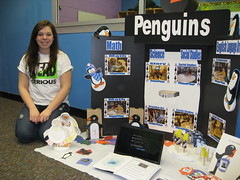 Rebekah & her penguin-themed FCCLA project