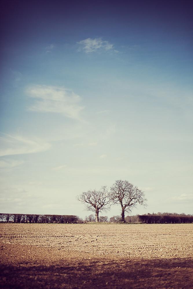 IMAGE: http://farm8.staticflickr.com/7061/6821860426_90752b6e0f_b.jpg