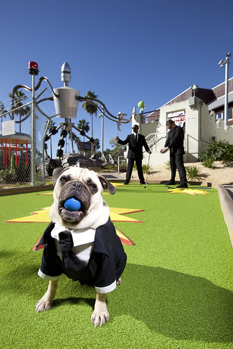 Hollywood Drive-In Golf Now Open at Universal CityWalk 3 - HR
