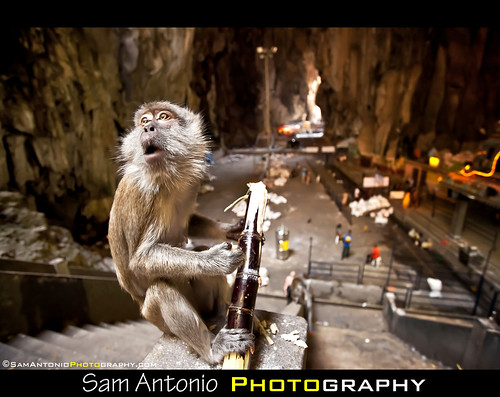 The Batu Caves Stink...Really Stink! by Sam Antonio Photography