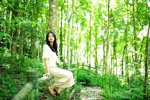 無料写真素材|人物|女性アジア|人物森林|台湾人