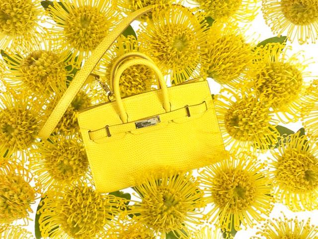 mini-kelly-birkin-hermes-primavera-2012-06