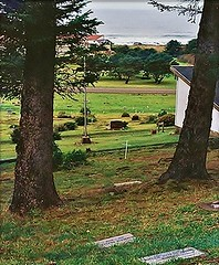yachats_cemetery