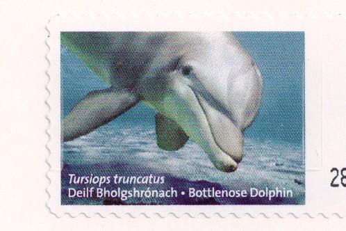 Dolphin Stamp Ireland