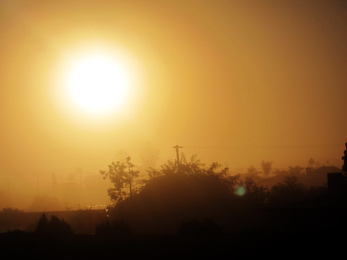 california morning november orange sun sunrise driving freeway gardengrove 2011 canonpowershots95