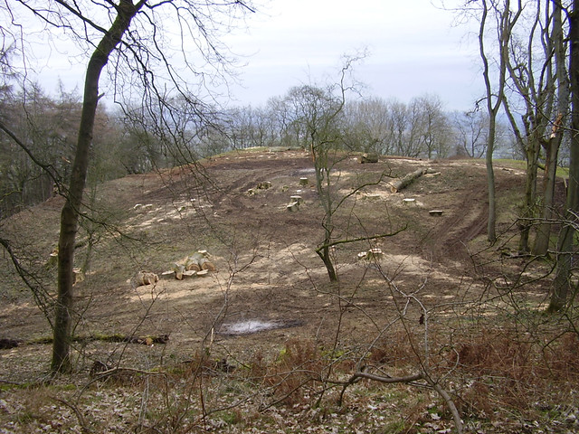 Soil Disturbance and Brash Fires on Midsummer Hill Hillfort