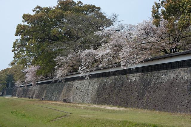 2012-kyushu-547