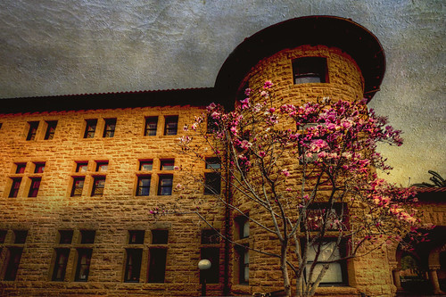 Stanford ll by dred707