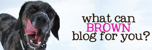 2010.02 Blog Header