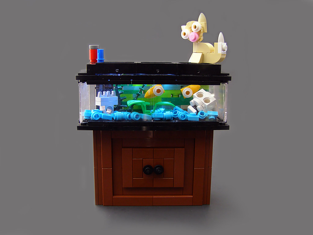 lego fish tank and cat