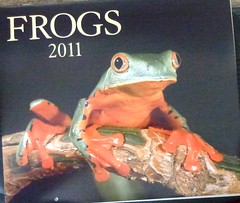 Firefly Books - Frogs 2011 by KenCalvino