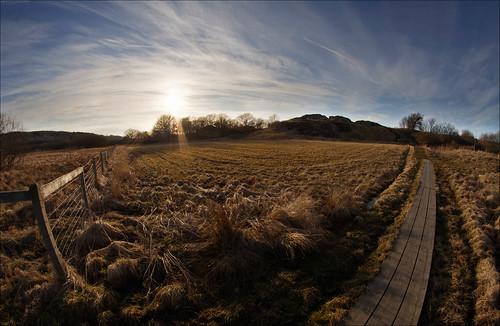 light sunset sky field nikon solnedgång d90 fält samyang nikond90