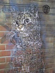 Black and white cat by C215