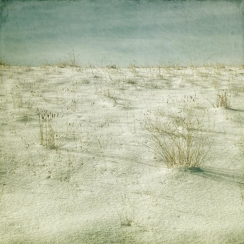 winter snow grass canon square minimal textured t1i applesandsisters