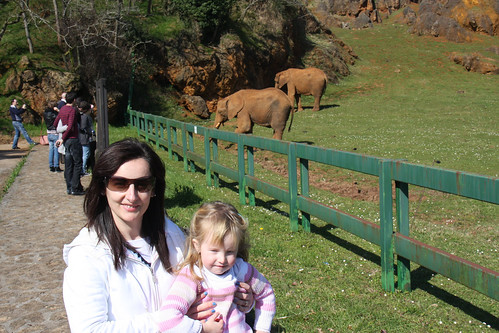 Nora with Elephants