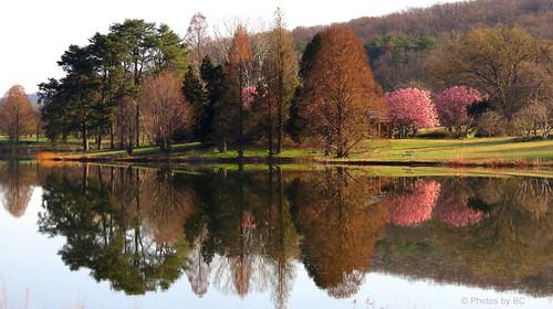 Lake Nevin.
