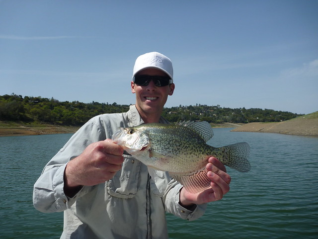 California fishing blog anderson lake bass and crappie for Fishing lakes in southern california