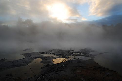 newzealand rotorua steam springs northisland geyser geothermal aotearoa fumo kuiraupark bayofplenty fumarole geothermy nuovazelanda vapore sorgenti geotermia geotermale isoladelnord