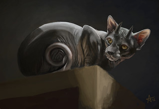 BttDB Day 10 Captain Savage's hairless cat