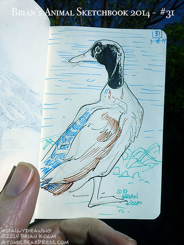 03-18-2014 #dailydrawing #animals goose