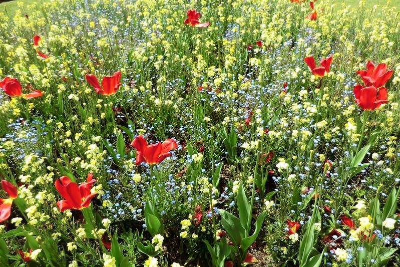 Flowers outside Buckingham Palace