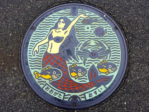 Ogata Nigata, manhole cover (新潟県大潟町のマンホール)