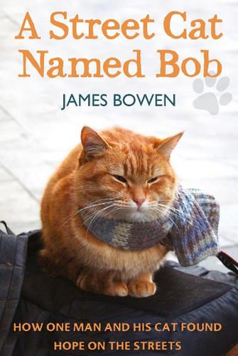 Bob's Book Cover