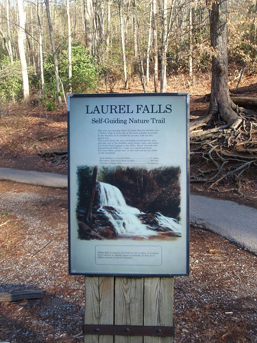 Laurel Falls trail