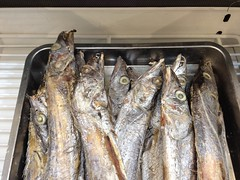 smoked fish, fish, fish, seafood, forage fish, food, shishamo, cuisine,