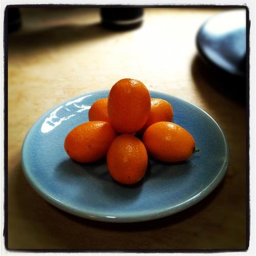 kumquats by Nature Morte