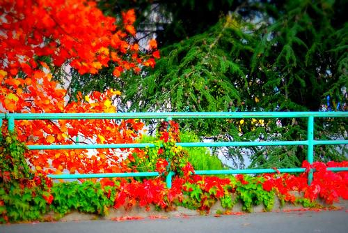 autunno mangia estate