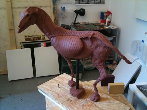 Equestrian Écorché