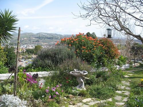 The Brezinski Garden