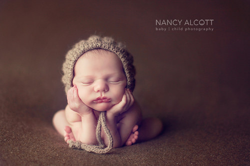 Fw: nancy alcott photography tips