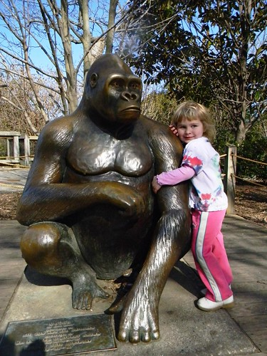 Lucy requested this photo, and moments later tried to nurse from the gorilla