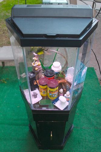 Better deals big cash back for 150 gallon fish tank for sale craigslist
