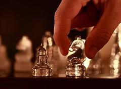 Your Move - EXPLORE #81