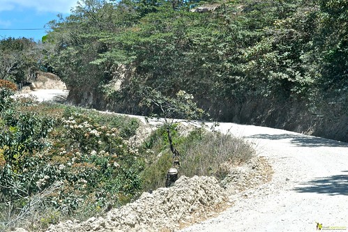 driving monteverde costa rica roads