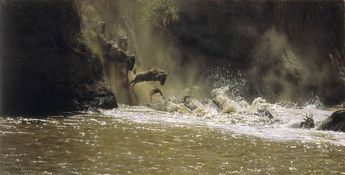 "'Crossing the River Mara' oil on board 24"" x 47"