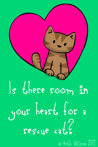 Is there room in your heart for a rescue cat?