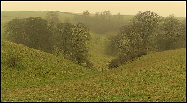 More Wolds scenery.