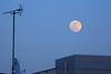 夕暮時の巨大月